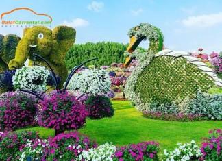 dalat flower festival 2019