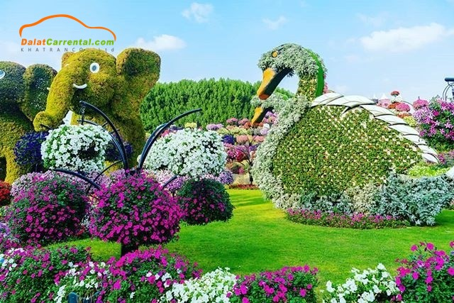 introduce dalat flower festival